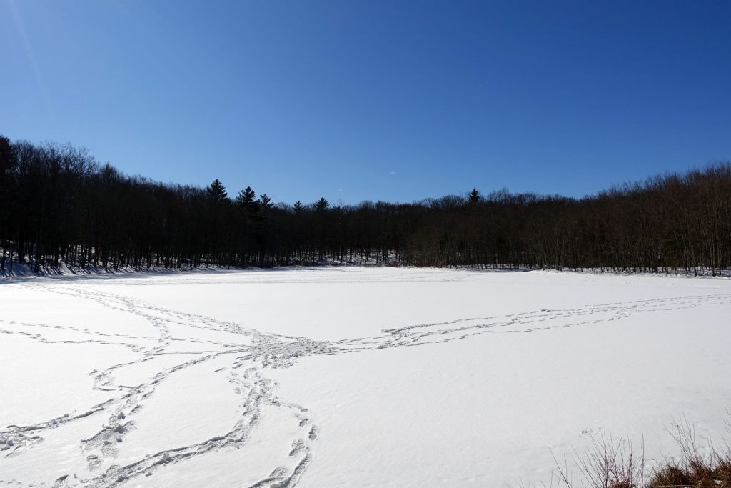 tracks in the snow on the frozen lake