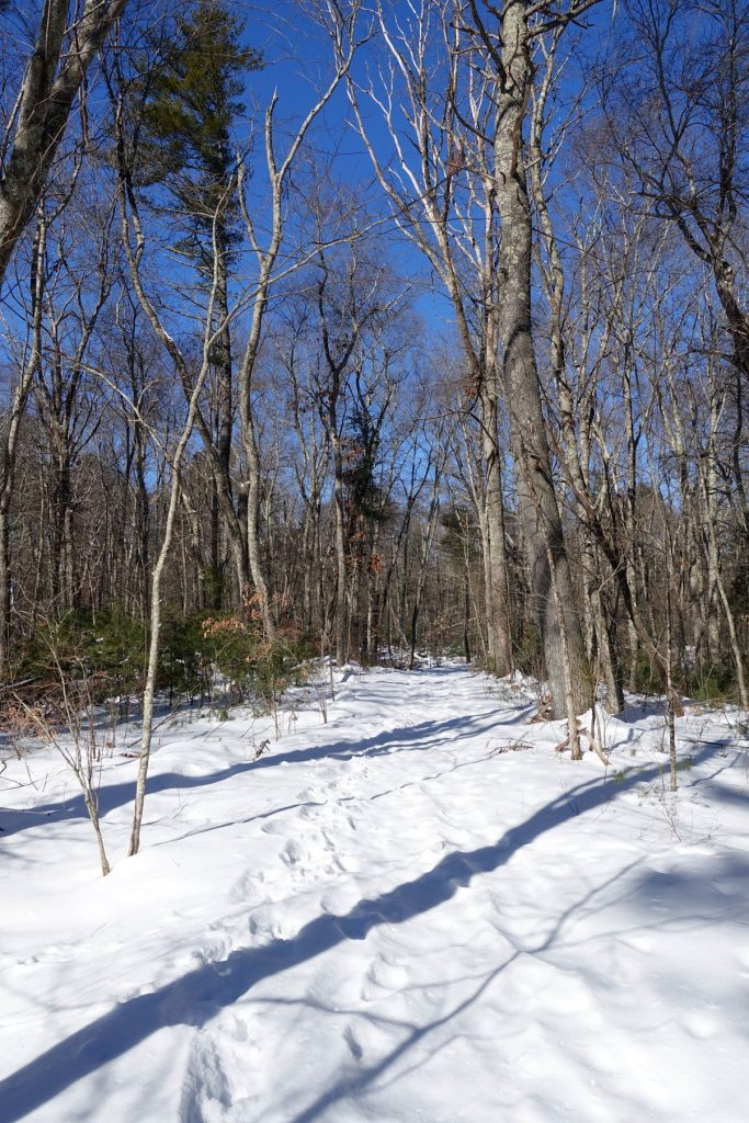 smooth travel on the unused snowy trail