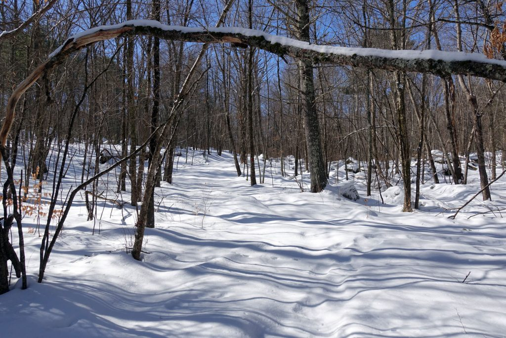 snow covered untravelled trail