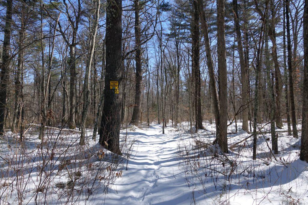 Spencer Trail leading back onto Land Trust land.
